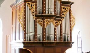 Adergas (Velesovo) – 37/II+P, 2007 – Opus 14